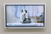 Thinkbox prepares Harvey the dog TV ad for Christmas