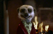 Wealthy meerkat in comparethemarket.com ad campaign
