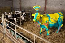 Things We Like: EE's Glasto Wi-Fi freebie