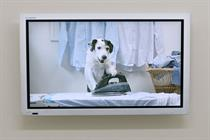 Thinkbox creates dog of an ad to promote TV