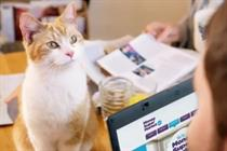 MoneySuperMarket unveils 'running with cats' TV campaign