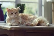Campaign Viral Chart: O2's cat-dog finally takes first