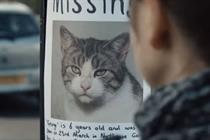 GameStore's missing cat ad sparks dozens of complaints