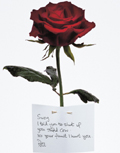 Grey creates dark Valentine's campaign to fight domestic violence