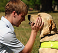 Guide Dogs replaces WWAV Rapp Collins with TDA