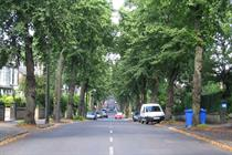 Planning consent not required for street tree felling, judge rules