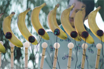 Chobani and Michel Gondry make music with smoothie ingredients