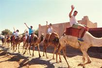 Incentive Travel Report 2015: NuSkin in Morocco