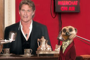 Comparethemarket.com 'Hasselhoff meerchat' by VCCP