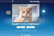 "O2 ""Be More Dog app"" by Lida"