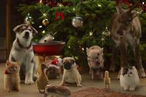 "McVitie's ""Christmas choir"" by Grey London"