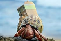 """Zoopla """"Crab world"""" by 101"""
