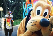 Brits steer clear of Disneyland Paris after terror attacks