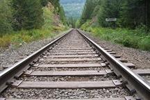 Government mulls train network sell-off