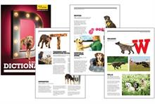 Third Sector Excellence Awards 2013: Annual Report - Winner: Dogs Trust Dictionary