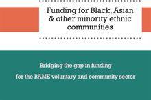Ethnic minority charities need funding pot and umbrella organisation, Voice4Change England says