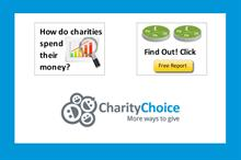 Charity Choice publishes free financial reports with breakdown of charities' expenditure