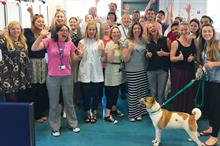 Third Sector Awards 2015: Fundraising Team - Winner: Battersea Dogs & Cats Home