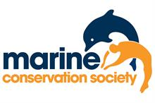 Partnerships round-up: Waitrose gives £500k to Marine Conservation Society