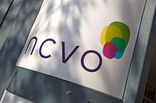 NCVO income rose by 7 per cent to £9.6m this year