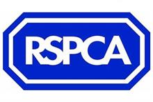 How a court battle led the RSPCA to a new approach on legacies