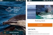 Charity's app allows people to report cetacean sightings