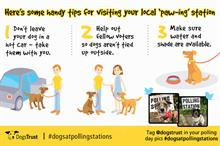 Dogs Trust makes the most of #dogsatpollingstations