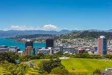 In Wellington, New Zealand, success arises through partnering