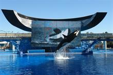 Why SeaWorld has to go beyond comms in its fight for survival