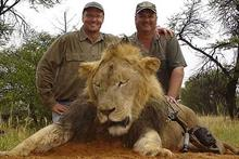 Dentist who killed Zimbabwe's Cecil the lion hires PR firm amid global backlash