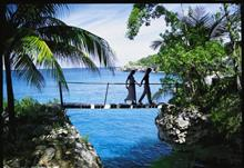 Five agencies left in the running for Jamaica Tourist Board pitch