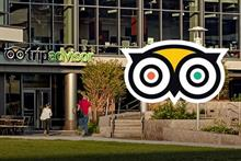 TripAdvisor hires Mischief to grow 'billion-dollar' tours and attractions business