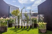 Event TV: Five horticultural activations at Chelsea Flower Show