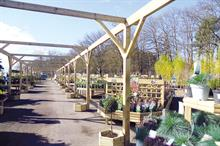 Garden centre profile: Frensham Garden Centre, Surrey