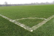 Sports bodies vow to improve turf pitches despite synthetics move