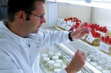 Soft fruit Trials in progress for half-a-dozen strawberry varieties