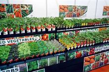 Grow Your Own - Buoyant market