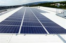 Walsh Mushrooms solar investment helps reduce carbon emissions