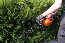 Echo HC-1501 hedgetrimmer