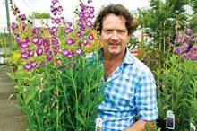 Leeds Castle to host flower festival