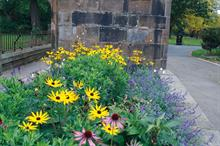 Horticulture Week Custodian Award - Best Urban Park Initiative
