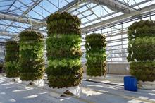 """New """"Lego-like"""" vertical growing system offers flexibility and small footprint"""