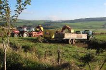 Ayrshire early potatoes seek protected status