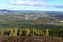 """University aims to re-brand """"declining"""" forestry courses"""