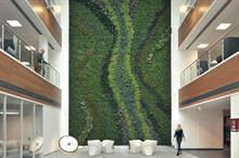 Building Research Establishment and Biotecture partner on groundbreaking biophilic office study