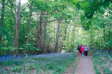 Horticulture Week Custodian Award - Best Amenity Woodland/Forest Initiative