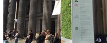 Moss installations procured to help combat Glasgow city pollution