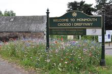 Monmouthshire County Council Pollinator Policy - a case study