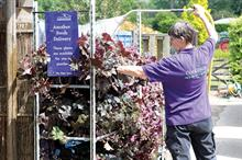 Minimum wage regulations and cost dilemma for garden retailers