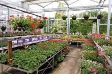 Strong spring bedding sales fuelling supply fears